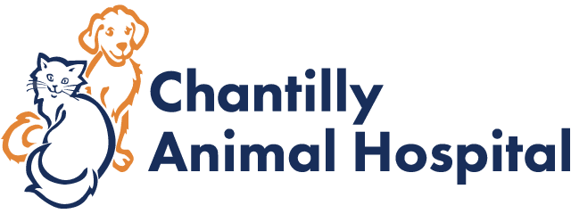 Chantilly Animal Hospital | Veterinarian Chantilly VA | Animal Hospital Chantilly | Boarding Grooming Chantilly Virginia Logo
